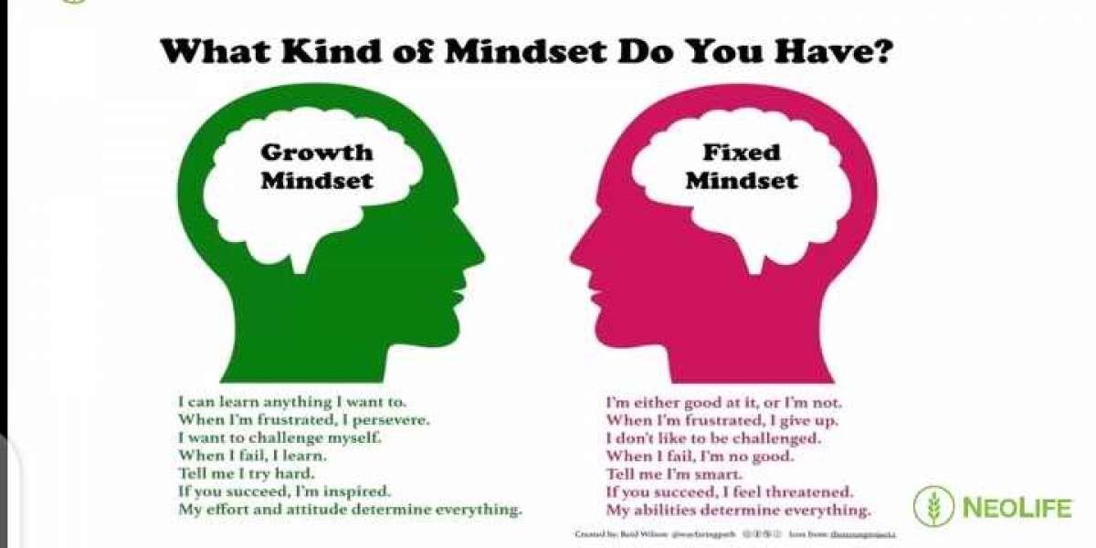 SUCCESS AND MINDSET